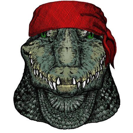 Alligator. Crocodilia. Portrait of african agressive animal. Bandana. Pirate. Motorcycle.