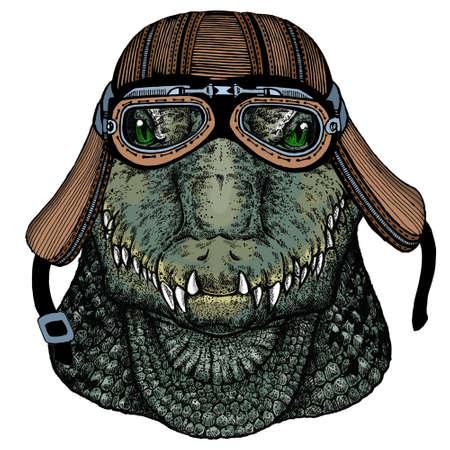 Alligator. Crocodilia. Portrait of african agressive animal. Motorcycle helmet.