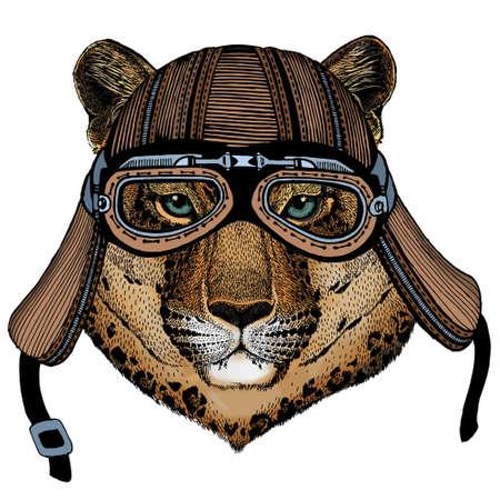 Leopard, jaguar face. Portrait of wild animal. Motorcycle helmet.