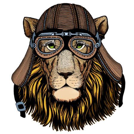 Lion head. Wild animal portrait. Face of african cat. Motorcycle helmet.