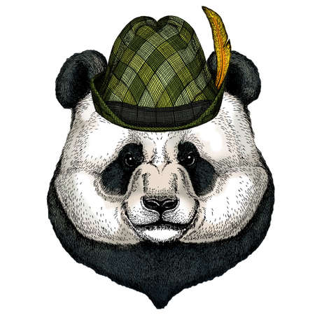 Big panda, bamboo bear portrait. Austrian bavarian tirol hat. Beer festival. Oktoberfest. Illustration