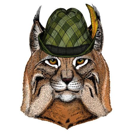 Lynx, bobcat, trot portrait. Austrian bavarian tirol hat. Beer festival. Oktoberfest. Head of wild cat. Animal face. Illusztráció