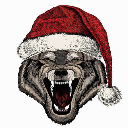 Vector portrait of wolf. Christmas red Santa Claus hat. Cool wild wolf. Animal head.