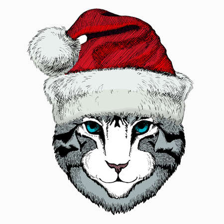 Cat head. Christmas red Santa Claus hat. Christmas winter animal vector portrait.