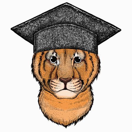 Vector portait of small baby lion head, face. Square academic cap, graduate cap, cap, mortarboard. Safari animal. Vetores