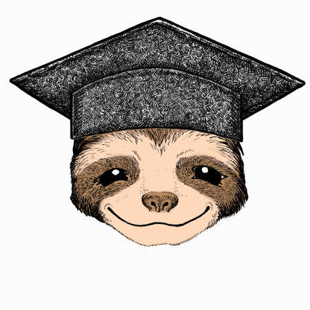 Smiling sloth face, vector portrait of sloth. Square academic cap, graduate cap, cap, mortarboard. Animal portrait