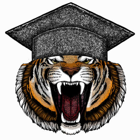 Vector tiger portrait. Square academic cap, graduate cap, cap, mortarboard. Animal head. 免版税图像