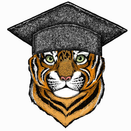 Baby tiger, small little tiger for children. Square academic cap, graduate cap, cap, mortarboard.