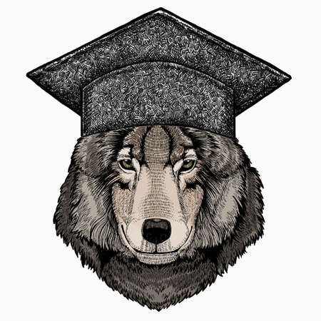 Vector portrait of wolf. Square academic cap, graduate cap, cap, mortarboard. Cool wild wolf. Animal head. 免版税图像