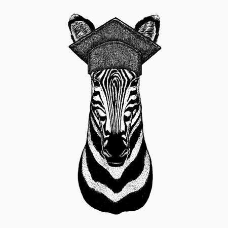 Zebra vector portrait. Square academic cap, graduate cap, cap, mortarboard. Head of african wild animal zebra. 矢量图像