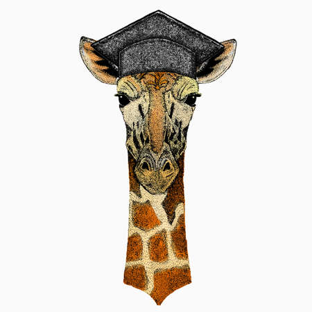 Vector giraffe portrait. Square academic cap, graduate cap, cap, mortarboard. African safari animal head. 矢量图像
