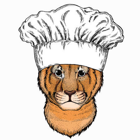 Vector portait of small baby lion head, face. Chef cook hat. Restaurant logo. Safari animal.