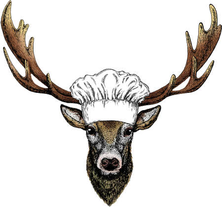 Vector portrait of deer. Chef cook hat. Restaurant logo. Woodland animal head.