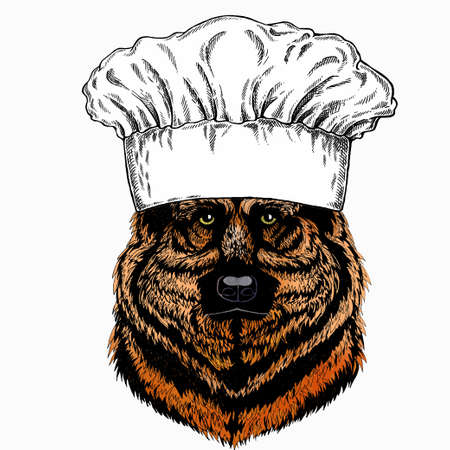 Shepherd Dog vector portrait. Chef cook hat. Restaurant logo. Dog head, face. 矢量图像
