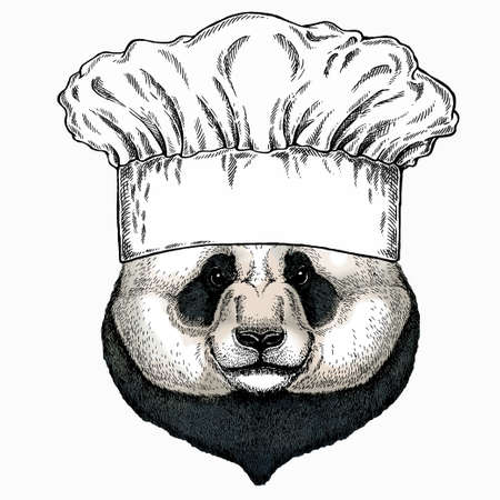 Panda, bamboo bear portrait. Chef cook hat. Restaurant logo. Head of big panda.