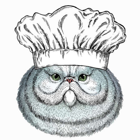 Portrait of persian cat. Chef cook hat. Restaurant logo. Vector cat head, face.