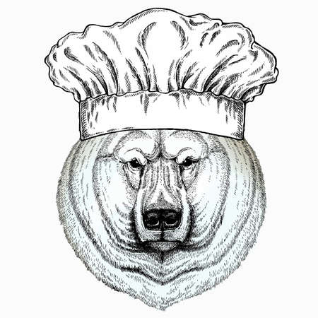 Polar bear head. Chef cook hat. Restaurant logo. Vector animal portrait.