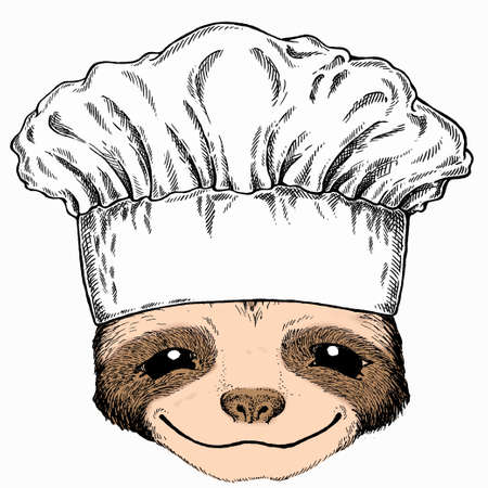 Smiling sloth face, vector portrait of sloth. Chef cook hat. Restaurant logo. Animal portrait