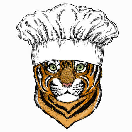 Baby tiger, small little tiger for children. Chef cook hat. Restaurant logo. 矢量图像