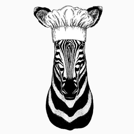 Zebra vector portrait. Chef cook hat. Restaurant logo. Head of african wild animal zebra.