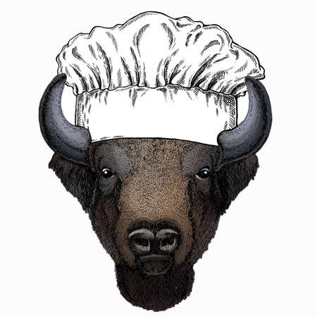 Vector bison head. Portrait of bull, buffalo. Chef cook hat. Restaurant logo.