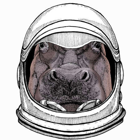 Hippo, hippopotamus portrait. Head of wild animal. Astronaut animal. Vector portrait. Cosmos and Spaceman. Space illustration about travel to the moon. Funny science hand drawn illustration. 矢量图像