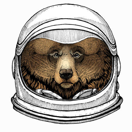 Wild bear portrait. Animal head. Grizzly bear. Astronaut animal. Vector portrait. Cosmos and Spaceman. Space illustration about travel to the moon. Funny science hand drawn illustration.