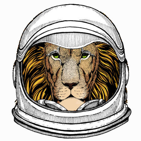 Lion. Portrait of wild lion. Safari animal head. Astronaut animal. Vector portrait. Cosmos and Spaceman. Space illustration about travel to the moon. Funny science hand drawn illustration. 矢量图像
