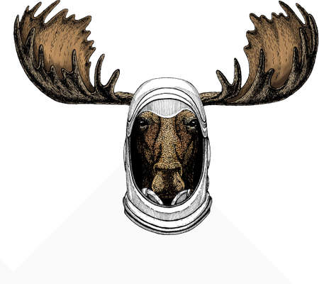 Vector wild moose, elk portrait. Moose head, face. Astronaut animal. Vector portrait. Cosmos and Spaceman. Space illustration about travel to the moon. Funny science hand drawn illustration.