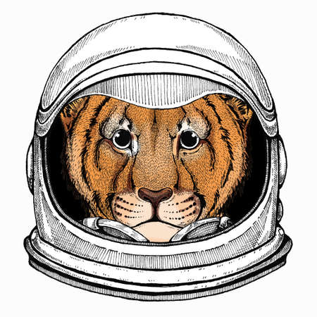 Vector portait of small baby lion head, face. Safari animal. Astronaut animal. Vector portrait. Cosmos and Spaceman. Space illustration about travel to the moon. Funny science hand drawn illustration. 矢量图像