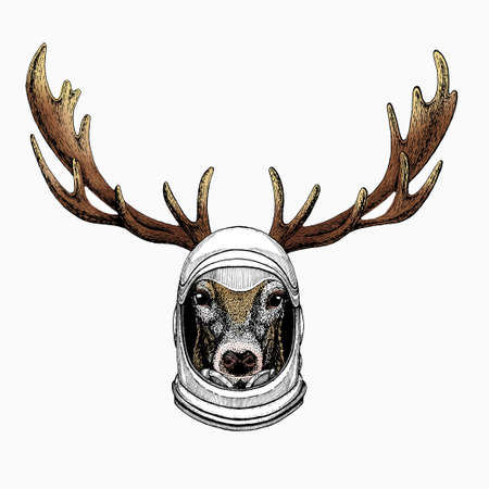 Vector portrait of deer. Woodland animal head. Astronaut animal. Vector portrait. Cosmos and Spaceman. Space illustration about travel to the moon. Funny science hand drawn illustration.