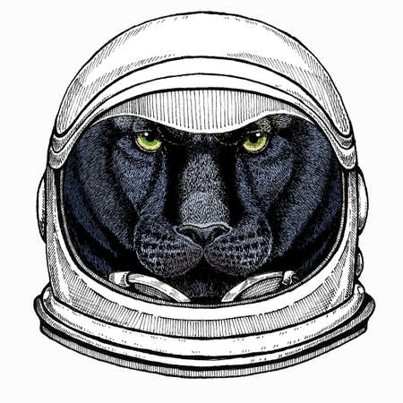Black panther. Wild cat portrait. Astronaut animal. Vector portrait. Cosmos and Spaceman. Space illustration about travel to the moon. Funny science hand drawn illustration.