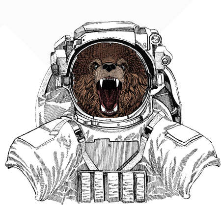 Bear wild animal face. Grizzly cute brown bear head portrait. Wild astronaut animal in spacesuit. Deep space. Galaxy.