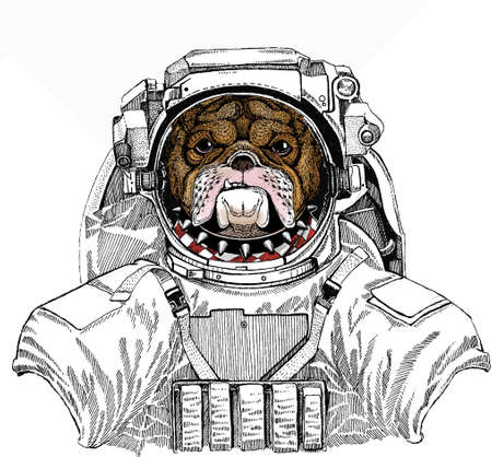 Wild astronaut animal in spacesuit. Deep space. Galaxy. Bulldog portrait. Dog head. Animal face. Ilustração