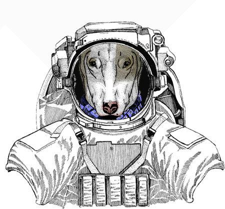 Wild astronaut animal in spacesuit. Deep space. Galaxy. Dog portrait, bullterrier portrait, bullterrier head, dog head Ilustração