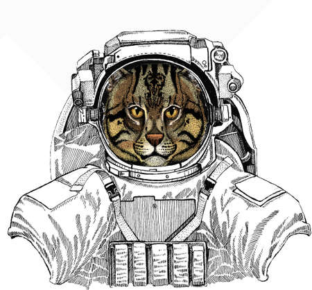 Wild astronaut animal in spacesuit. Deep space. Galaxy. Wild fishing cat portrait. Animal face.