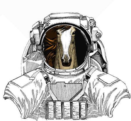 Wild astronaut animal in spacesuit. Deep space. Galaxy. Horse head, horse portrait. Animal face for logo, emblem, tee shirt.