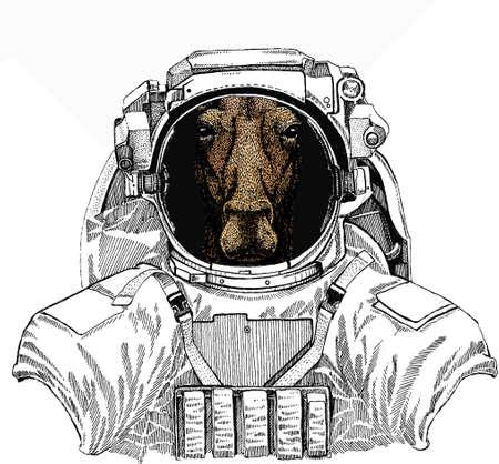 Wild astronaut animal in spacesuit. Deep space. Galaxy. Wild moose, elk portrait. Moose head, face. Ilustração