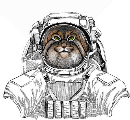 Wild astronaut animal in spacesuit. Deep space. Galaxy. Pallass cat. Vector portrait, wild cat head, wild cat face.