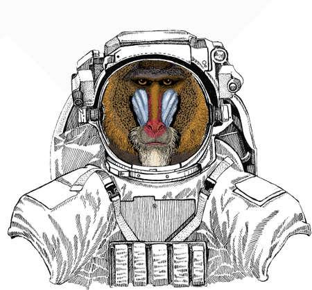 Wild astronaut animal in spacesuit. Deep space. Galaxy. Baboon, monkey, ape. Vector portrait of wild animal. Ilustração