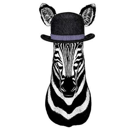 Zebra vector portrait. Head of african wild animal zebra.