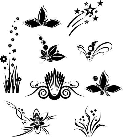 lily flowers collection: patterns