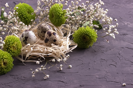 Easter decoration, Easter eggs in the nest on gray concrete background