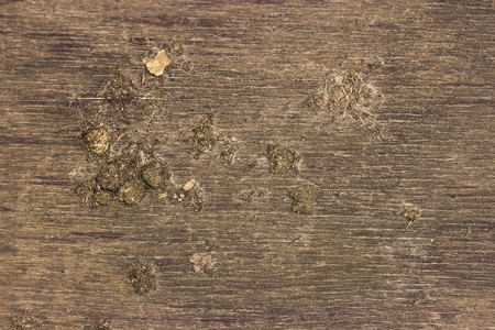 Grunge Wooden Cracked Background or texture with mud