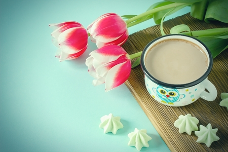 Red tulip white white border on blue background cacao cup marshmallow. Stock Photo