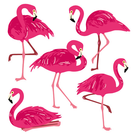 chick: Vector set with pink flamingos. Hand Drawn illustration
