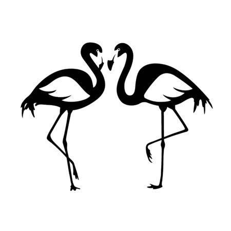 Vector isolated flamingos pair. Black and white illustration