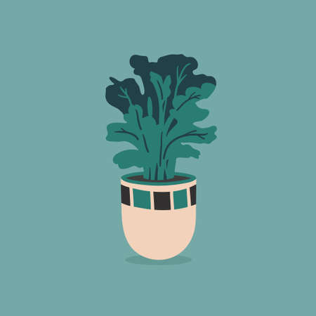 Vector pot with house flower isolated on colorful background