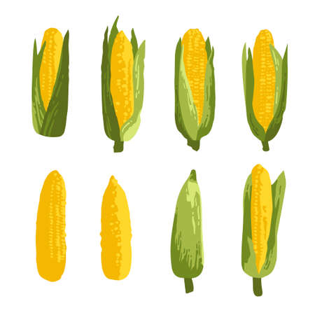 Vector summer pattern with sweet corns, flowers and leaves. Seamless texture design.