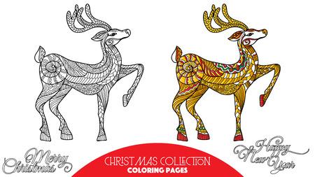 flor de pascua: Libro para colorear para los adultos y niños mayores. Página para colorear con elementos decorativos de Navidad. Esquema de dibujo con la muestra de color